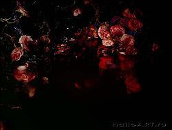 Нажмите на изображение для увеличения.  Название:Bloody Roses 2007 _ Margriet Smulders copy.jpg Просмотров:206 Размер:84.3 Кб ID:30253
