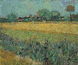 Нажмите на изображение для увеличения.  Название:VG Veld met bloemen bij Arles.jpeg Просмотров:185 Размер:69.8 Кб ID:5832