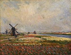 Нажмите на изображение для увеличения.  Название:Bollenvelden en windmolens bij Rijnsburg.jpeg Просмотров:460 Размер:52.7 Кб ID:5731