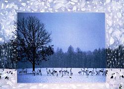 Нажмите на изображение для увеличения.  Название:113_2486_lg_1_Kang_Gyung Sook_ Winter Serenade_ 72,7x53cm, Photography, Oil on Canvas 2000_b cop.jpg Просмотров:1025 Размер:153.4 Кб ID:17303